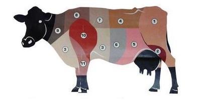 Hovädzie mäso
